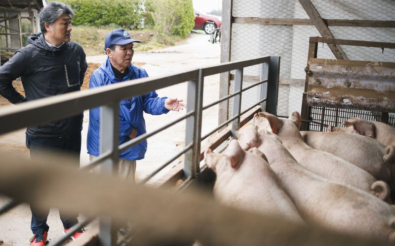 養豚農家との対談風景